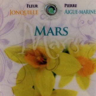 Fleur & Pierre de naissance - mars