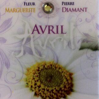 Fleur & Pierre de naissance - Avril