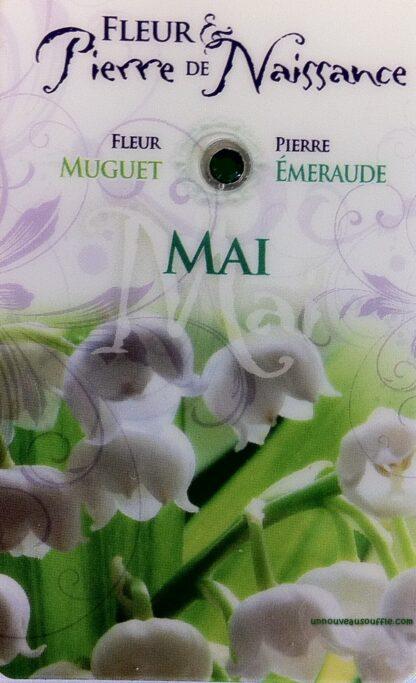 Fleur & Pierre de naissance - Mai