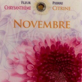 Fleur & Pierre de naissance - Novembre