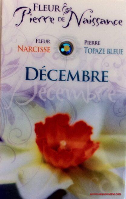 Fleur & Pierre de naissance - Décembre