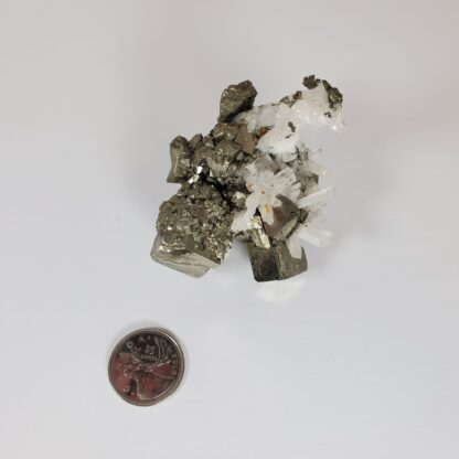 quartz sur pyrite - specimen