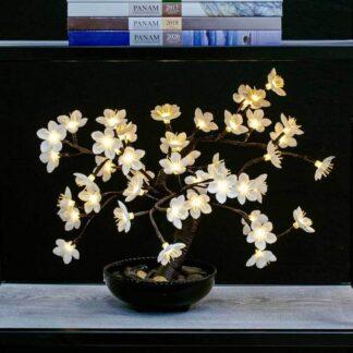 Bonsaï à fleurs de cerisier blanc éclairé