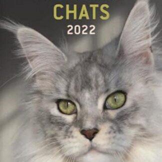 Agenda 2022 des chats